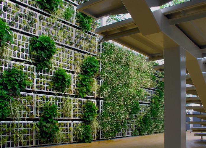 De la fachada al vallado vegetal en un solo paso for Muros verdes arquitectura