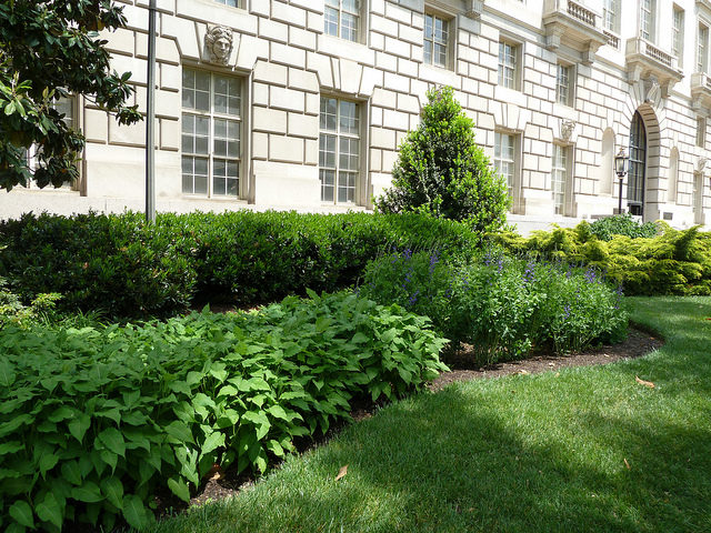 WashingtonDC_ConstitutionAve(Wendy Cutler)
