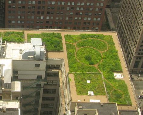 cubierta-verde-ciudad